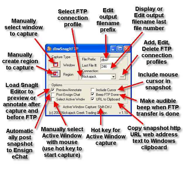 dbwSnagItFTP main screen